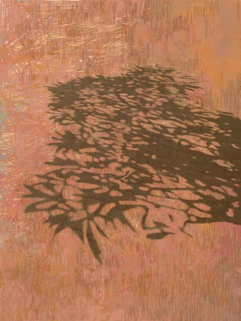 A-sombra-de-uma-arvore-2